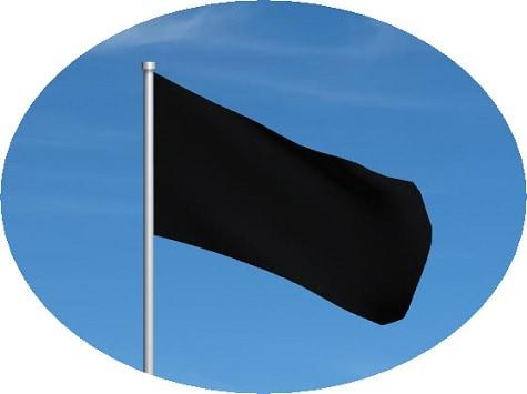 black flag motogp