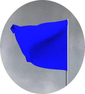 MotoGP blue flag