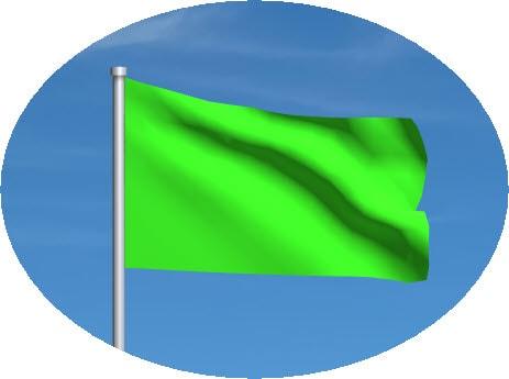 green motogp flag